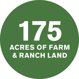175 acres of farm & ranch land